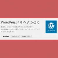 wordpress48-1